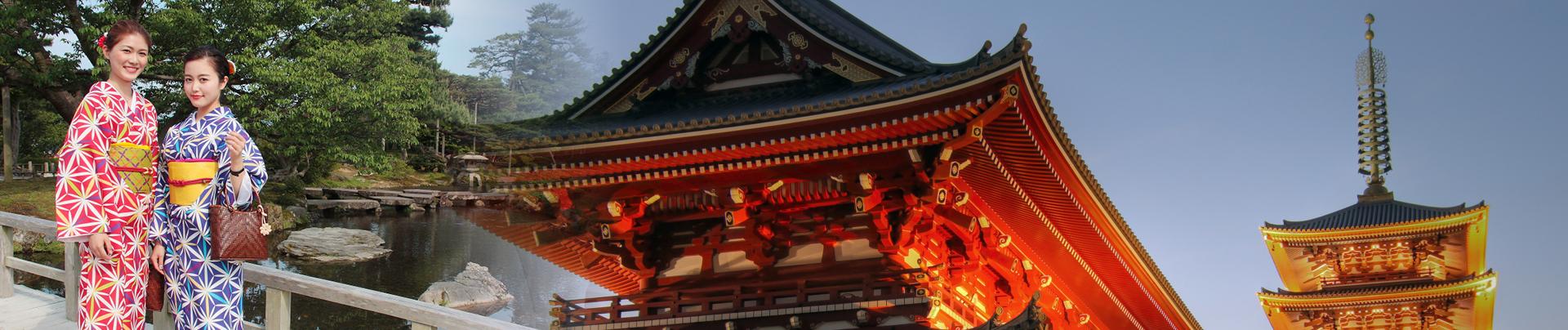 טיול מאורגן ליפן - מסלול מרתק אל ארץ השמש העולה ופריחת עצי הדובדבן