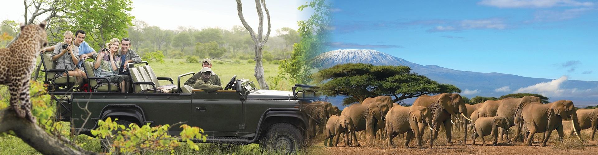 דרום אפריקה - מסע אל שמורות הטבע הענקיות כולל הצ'ובה והקרוגר ועד למפלי ויקטוריה